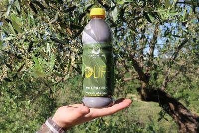 estratto di foglie di ulivo